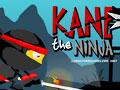เกมส์ Kane The Ninja