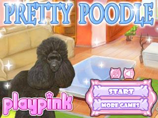 เกมส์ Pretty Poodle