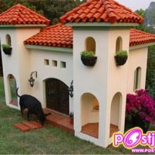 บ้านสัตว์เลี้ยง ที่คนอยากอยู่