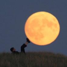 เจ้าบังอาจมากที่เล่นกะดวงจันทร์ BY แอล