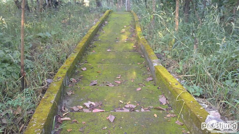 ทางลงที่เต้มไปด้วยตะไคร่น้ำ