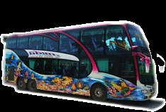 รถบัสสวยๆ