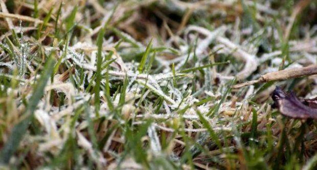 เตือนช่วงปีใหม่.....ภาคเหนือและอีสานตอนบนหนาวจัด