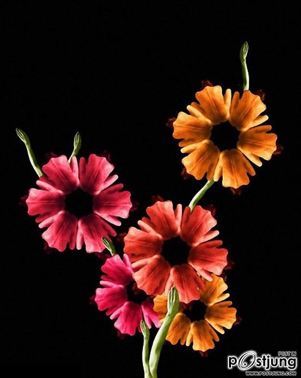 แปลก!! เปลือยเป็น....ดอกไม้ สวยๆ