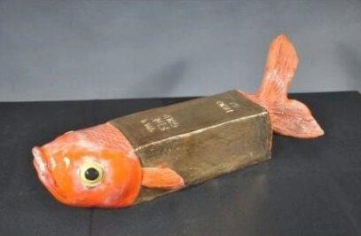 ปลาทองสุดแปลก