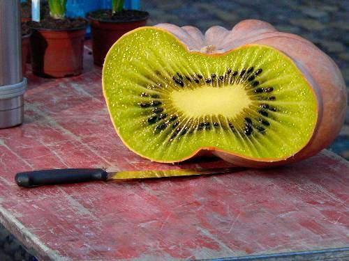 ผลไม้แปลกๆ สวยๆ ๒