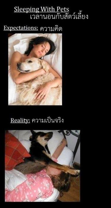 English Thai โดนใจไทยอังกฤษ (7)