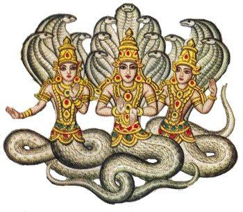 พญานาคแบบอินเดีย vs พญานาคแบบไทย