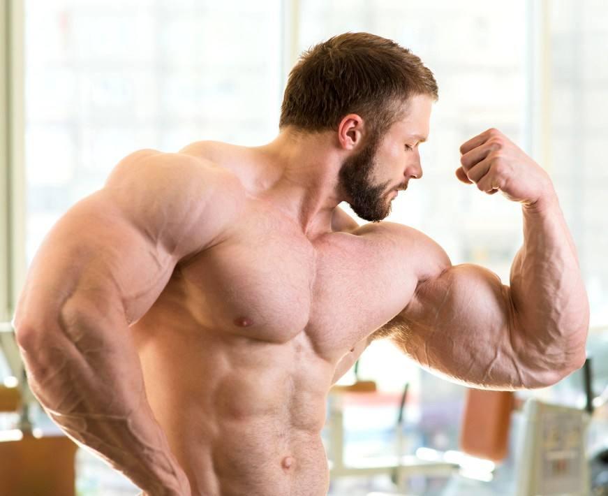 Bodybuilder in the gym NO.1