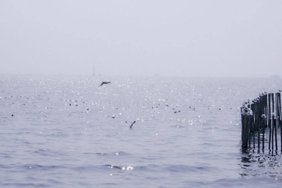 สถานตากอากาศบางปู จ.สมุทรปราการ