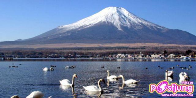 ภาพภูเขาฟูจิ ในฤดูร้อน