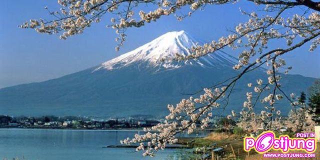 ภาพภูเขาฟูจิ ในฤดูใบไม้ผลิ