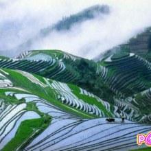 นาแบบขั้นบันได  ( rice terrace ) มรดกโลกของคนเอเชีย