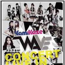 คุณชอบใครใน kamikaze wave