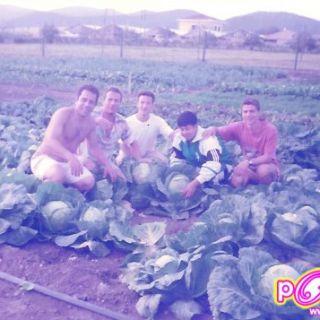 ฝึกวิชาชีพเกษตรกับนักศึกษาประเทศอิตาลีที่เมืองซิลล่าร์ ประเทศอิตาลี