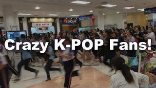ติ่งเกาหลี กรี๊ดลั่น ทำสนามบินแทบแตก !