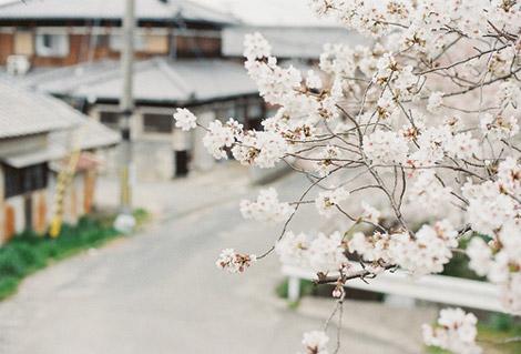 Korea_travel