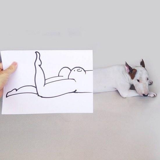 ศิลปะน่ารักจากน้องหมา