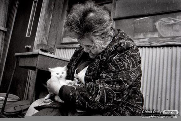 Grandma and the cat 2