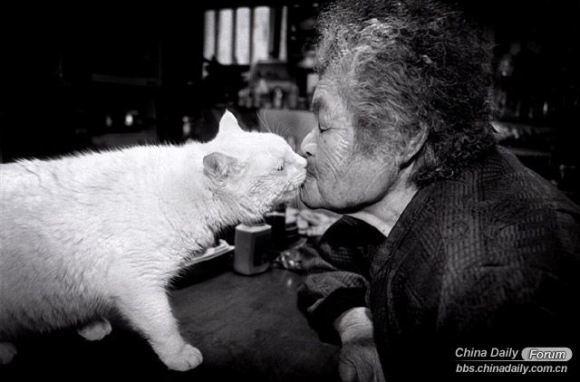 Grandma and the cat 13